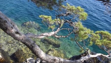 croazia_2013_davide_consorte_04
