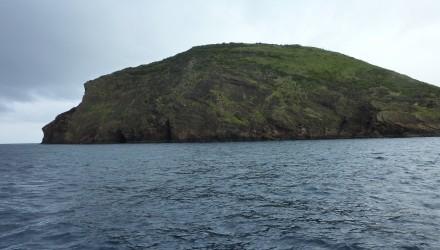 Bramosia da Le Marin ad Horta – In navigazione